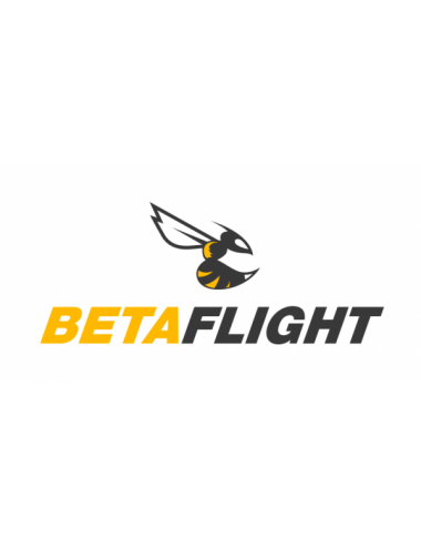 BetaFlight Setting Drone Race